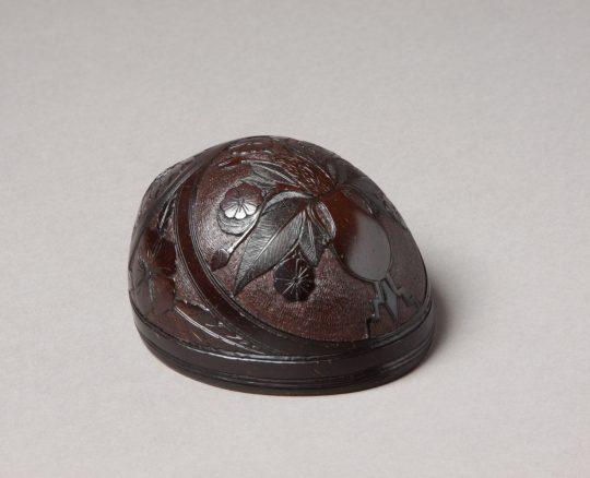 Carved shell / Cragen gerfiedig